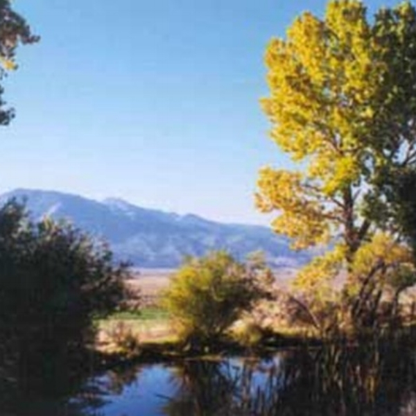 Deer Run Ranch  - Deer Run Ranch B&B provides a relaxed and private getaway - away from the harried pace of urban life, yet in close proximity to fine restaurants, casinos, and recreational activities in Reno.