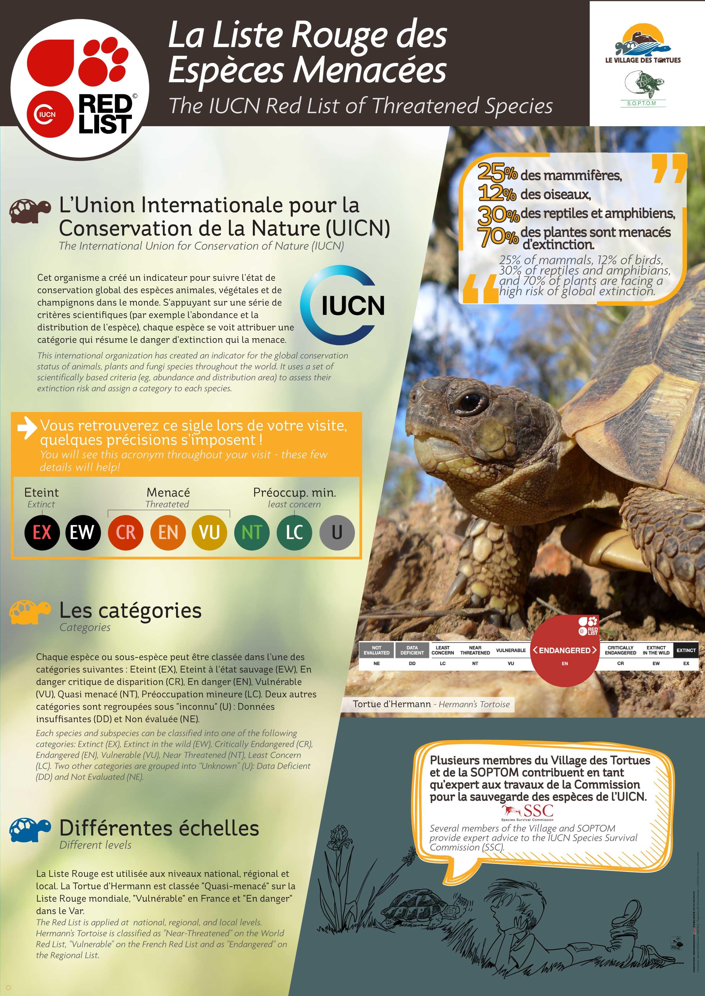 PROTEC-INTERNATIONALES1.jpg