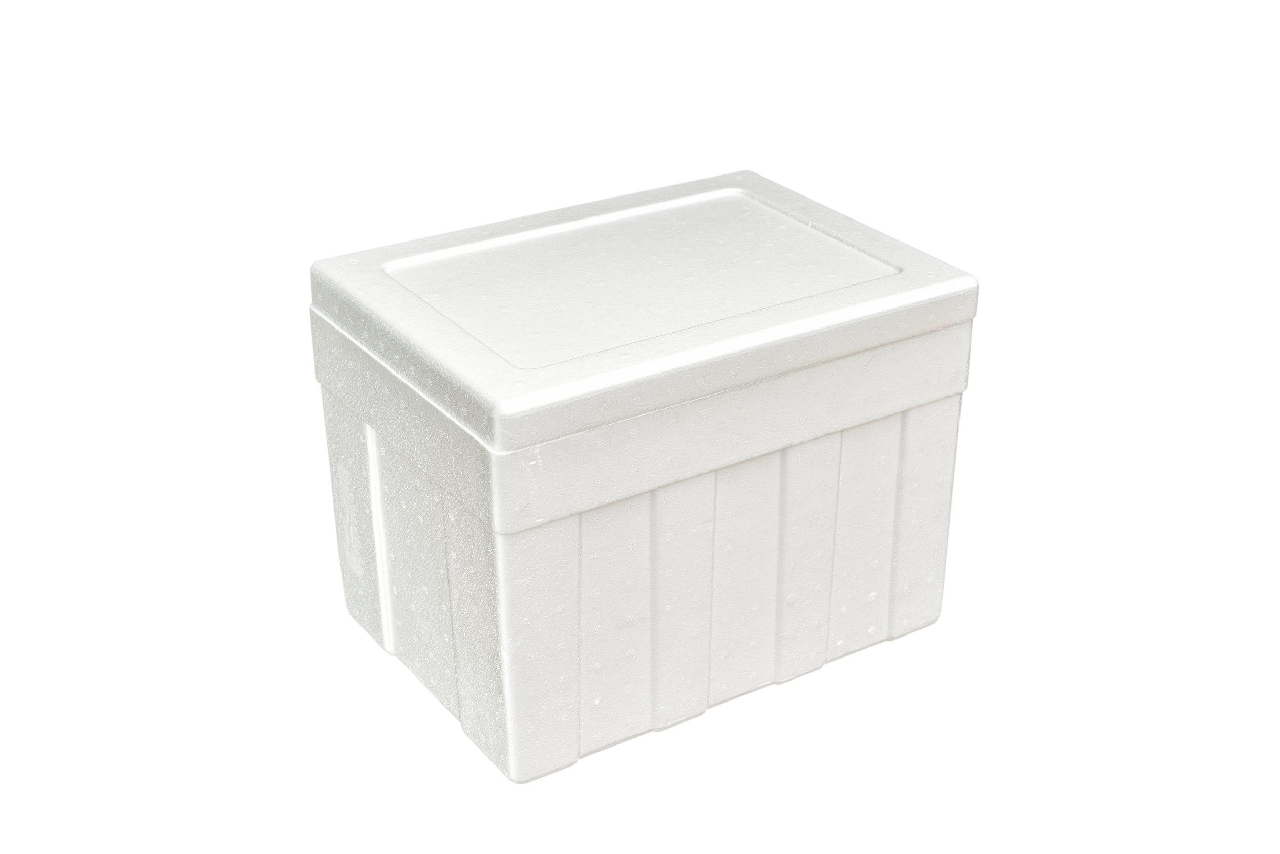 styrofoam box.jpg