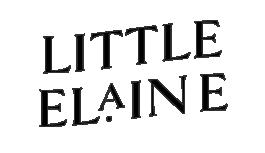 LE-Logo-2-B.png