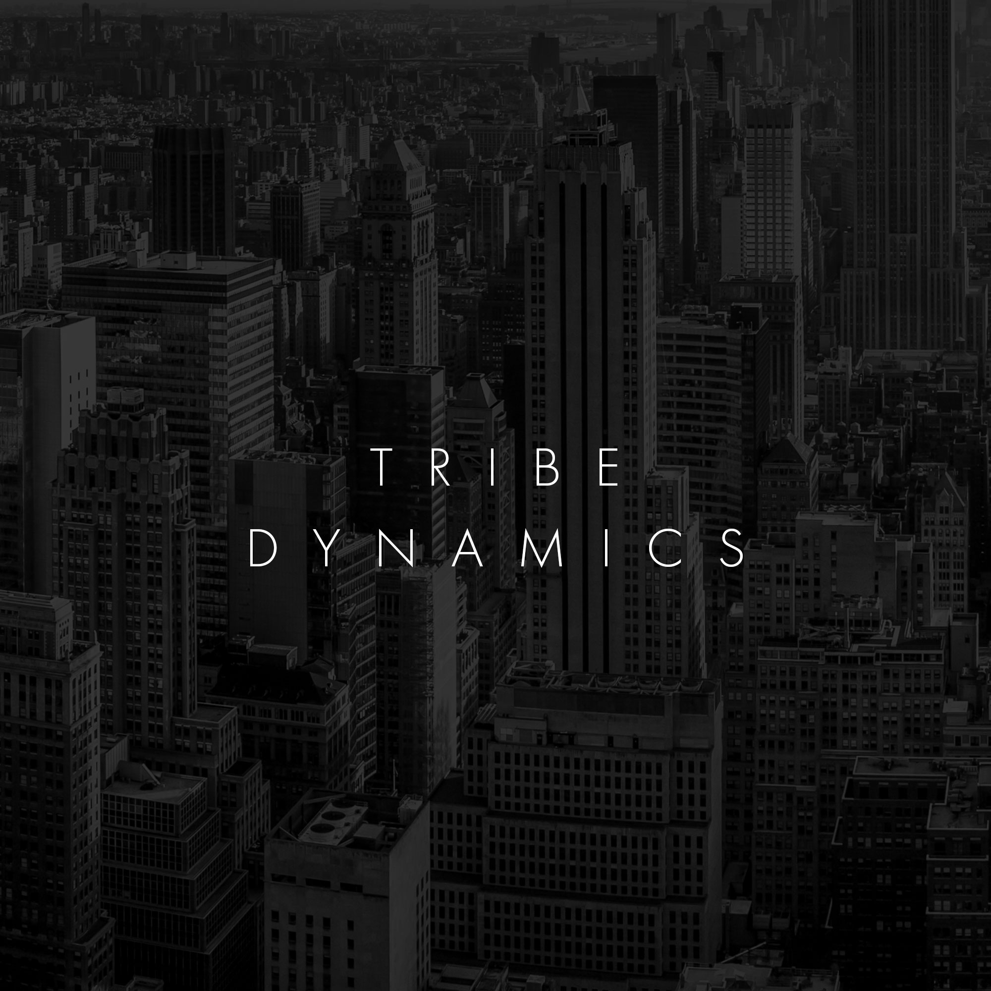 tribe-dynamics.jpg