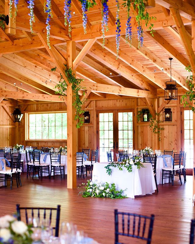 Delphinium made the perfect blue pop dripping from the ceilings of this family barn built for this .celebration and then many more..