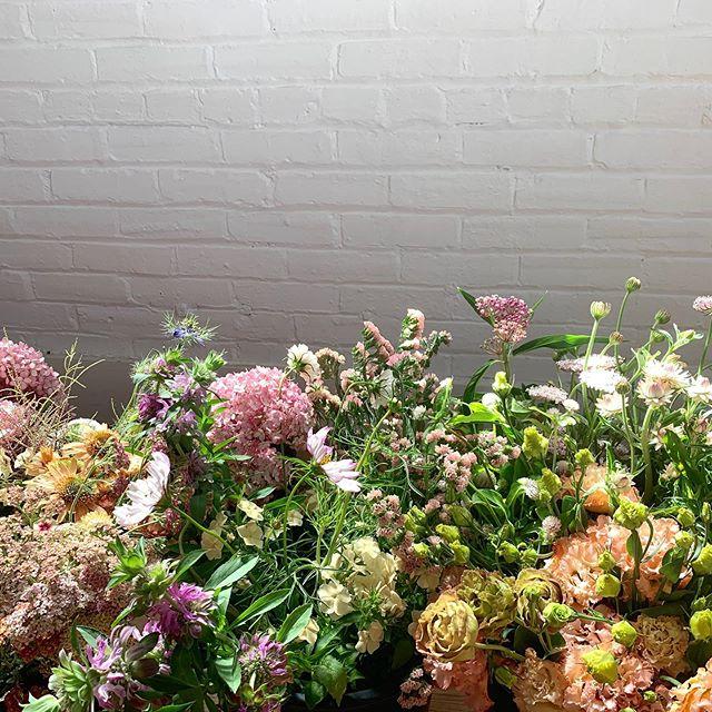 Fields of flowers..... #wedding #weddinginspo #weddingflowers #floraldesign #flowers #flowerstagram #weddingsofinstagram #blooms #philly #visitphilly #visitnj #montcowedding #montgomerycounty #phillybride #phillygram #njbride #bride #centerpiece #bouquet #floralfix #retrobride #destinationphilly #destinationphiladelphia  #philadelphia #phillylove #phillyinlove #philadelphiawedding #elopephilly #phillyelopment