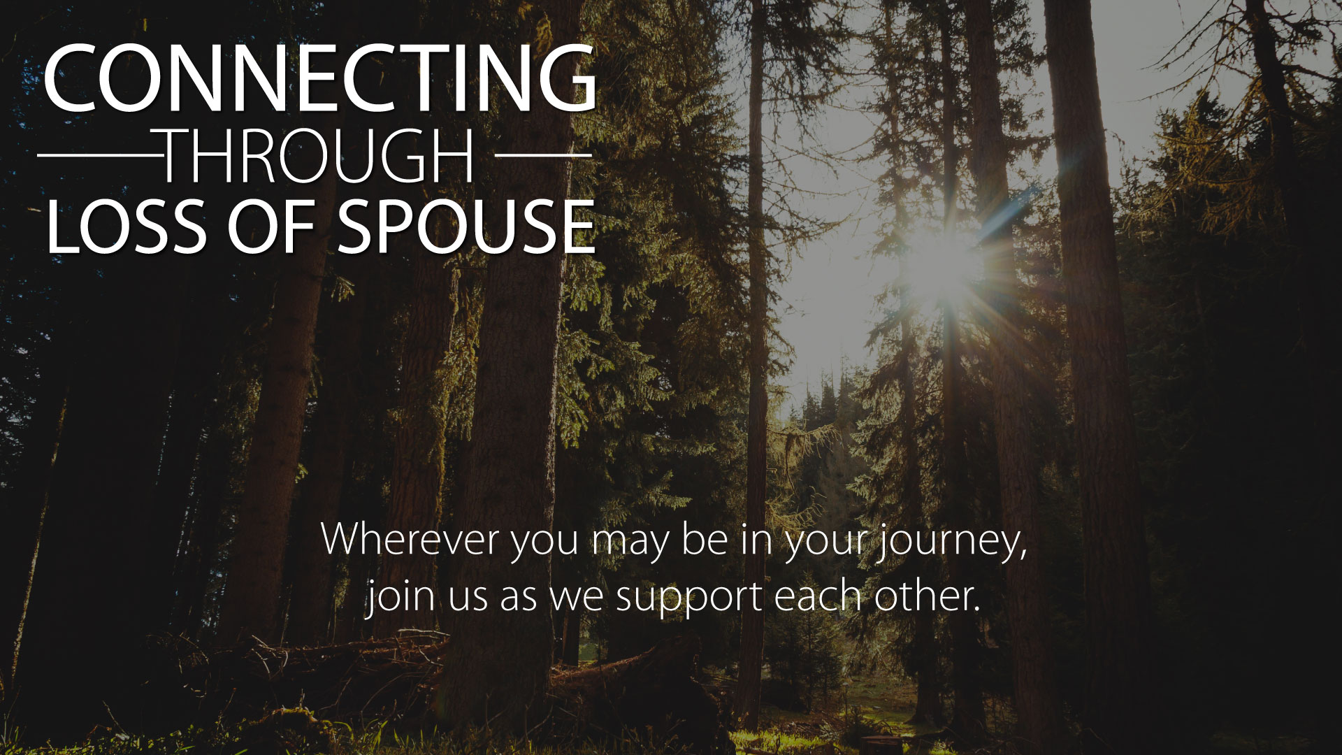 CONNECTING THROUGH LOSS OF SPOUSE - Connect, listen, encourage, and grow in community with others who have lost a spouse. This group meets casually once a month at various locations.Email Mandy at mschneider@willowcreek.org for more information.Sunday | Sept. 22 | 10:15am - 11am | Atrium Reserved TableFor those that have lost a spouse, grab a post-service coffee and treat, and join us at a specially reserved table in the atrium.