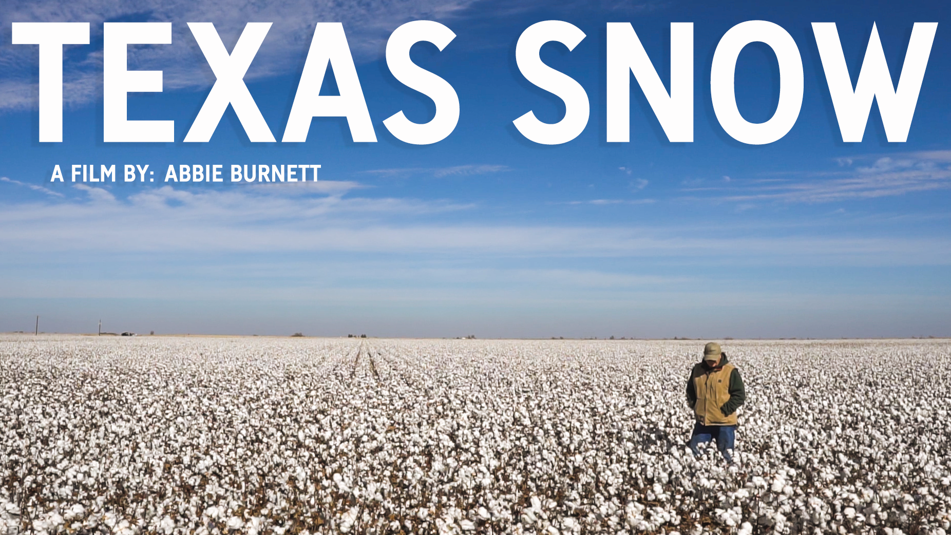 texas snow.png