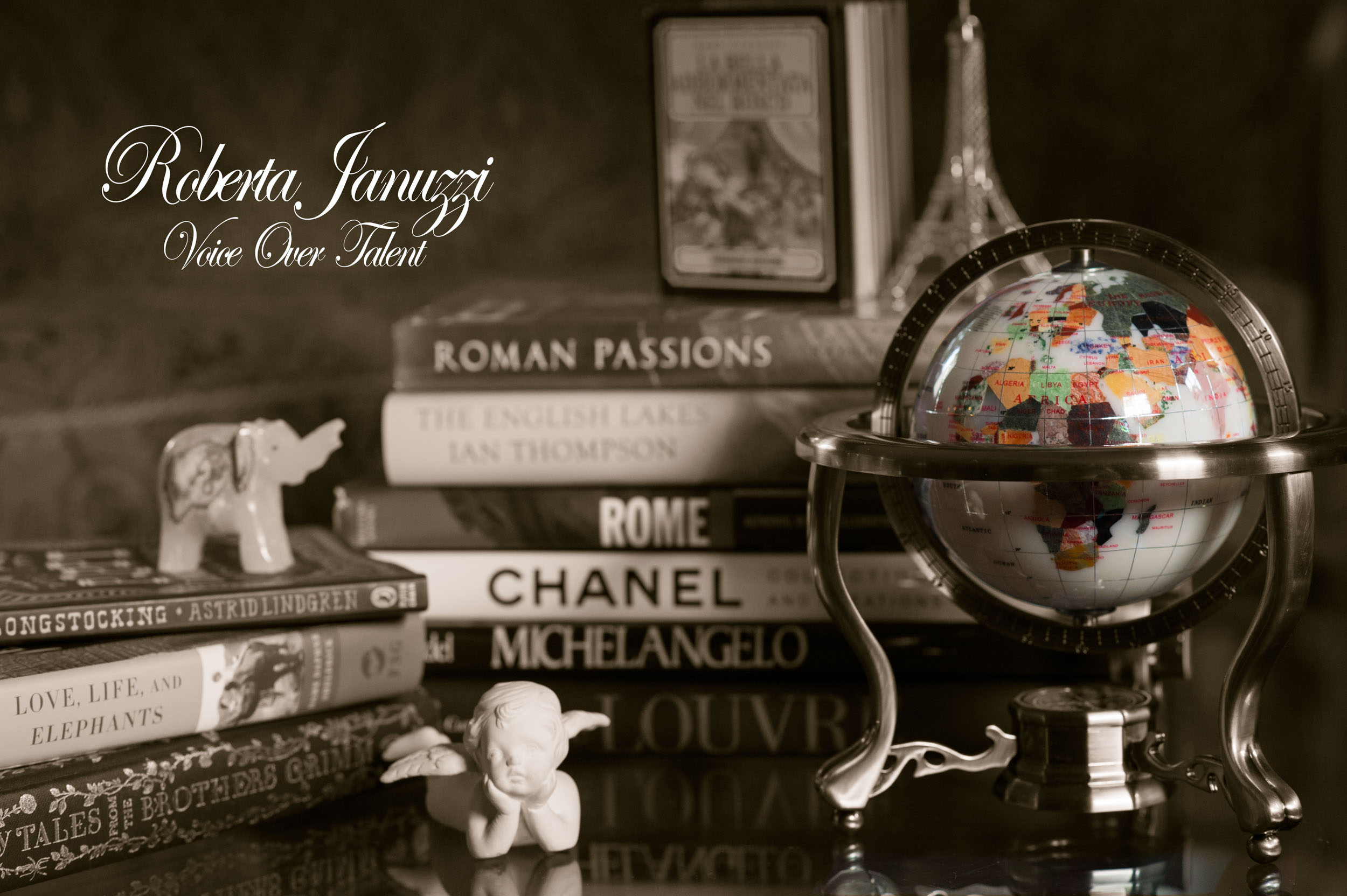 Maura Wayman Photography, Photography, Corporate Photography, stock, stock images, Massachusetts, Boston, Metro West, still life, globe, cherib, elephant, books, selective color, selective focus,