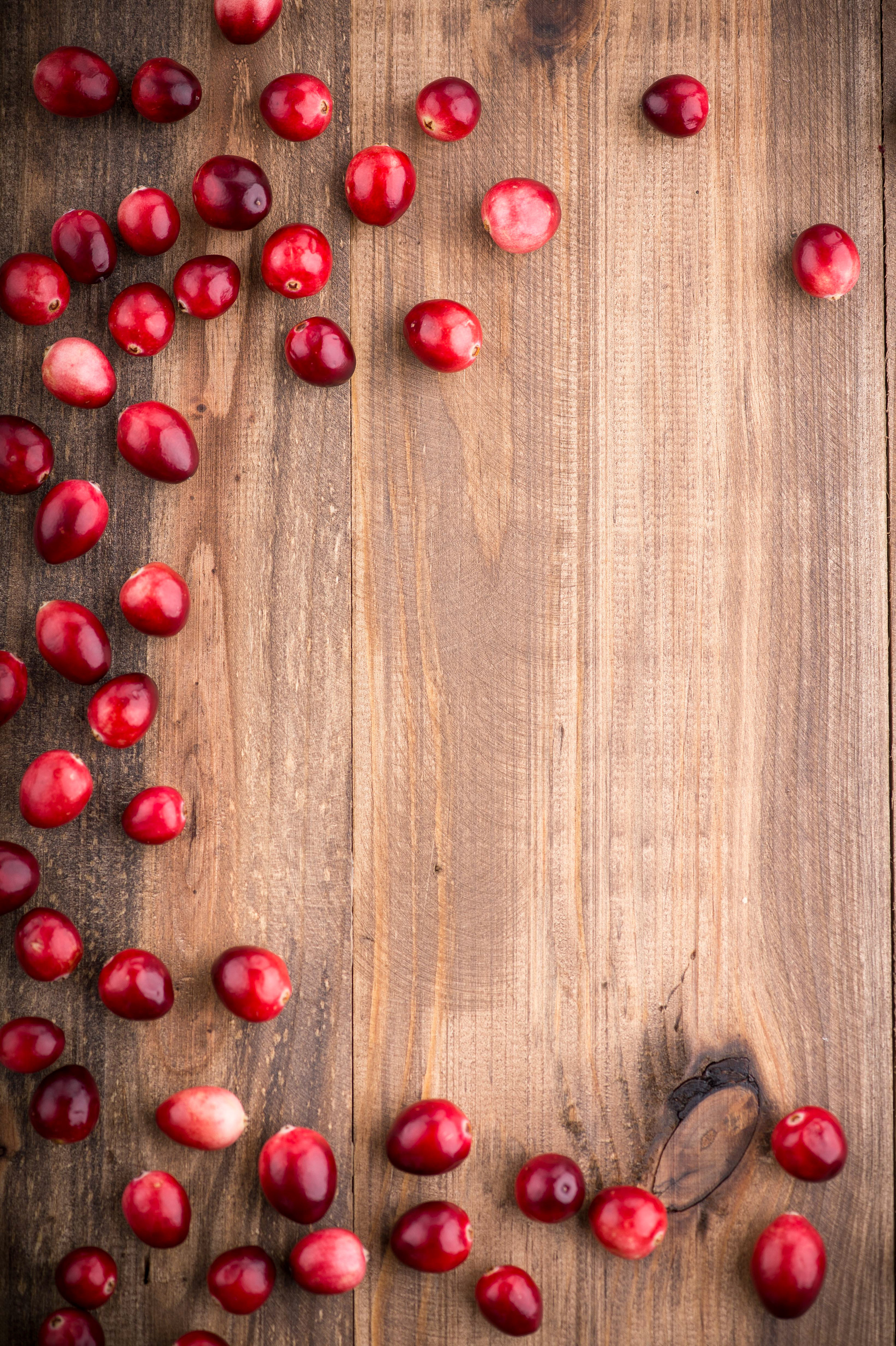 Corporate Imagery 89Brown wood with berries and blank space001*2-2.jpg