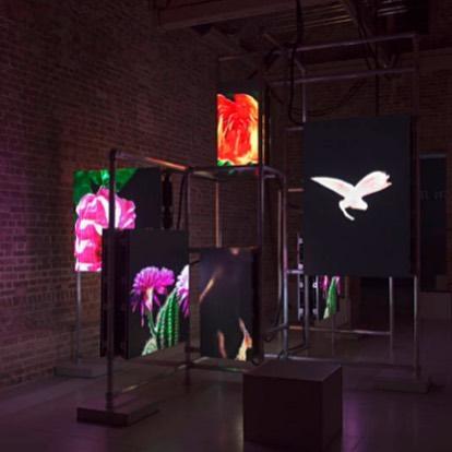 Hito Steyerl: Power Plants, Serpentine Sackler Gallery, London on view until May 6th •  #nowonview #exhibiton #gallery #happeningnow #contemporaryart #london #londonart #installation #artadvisor