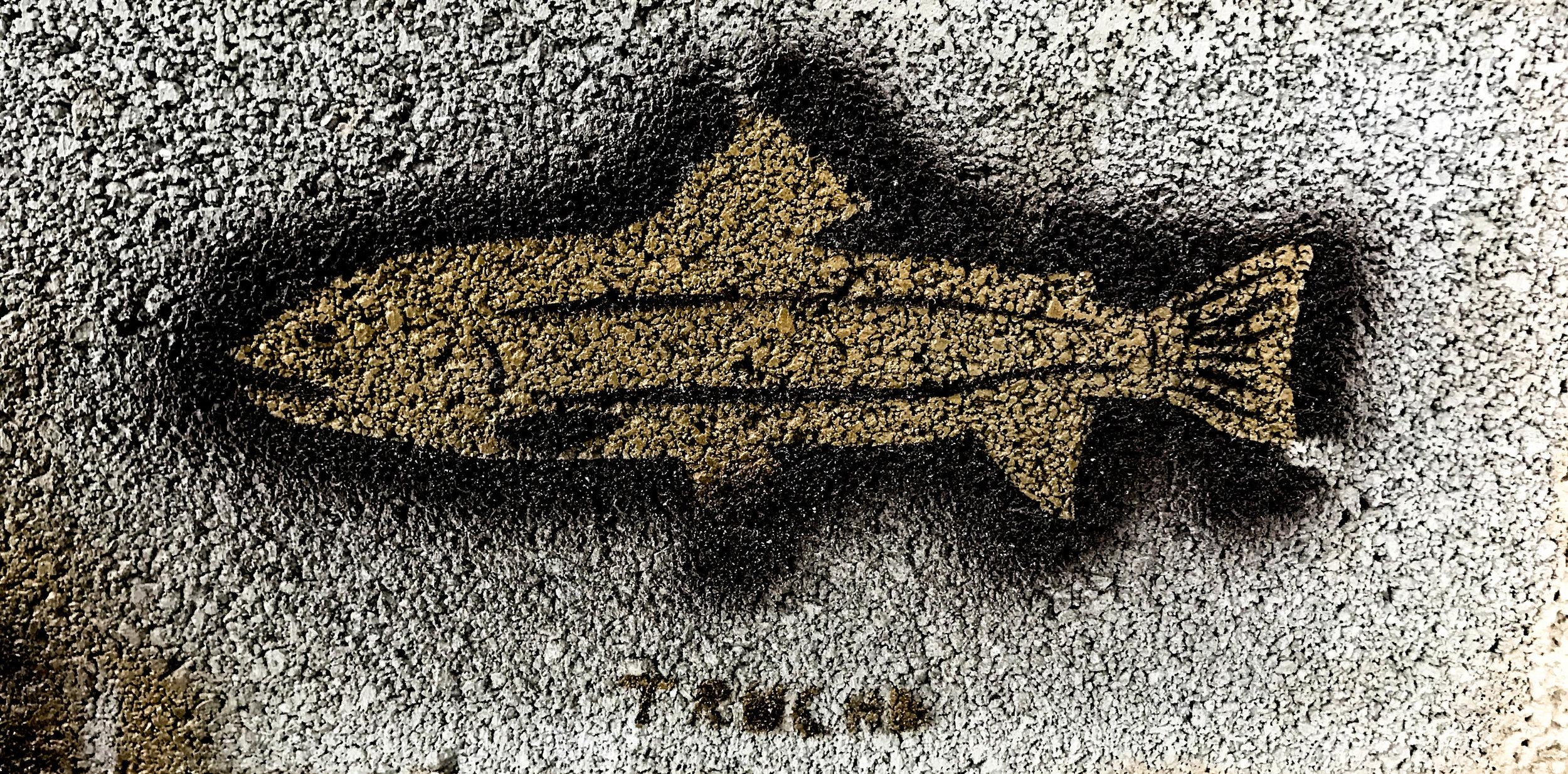FISHART.jpg