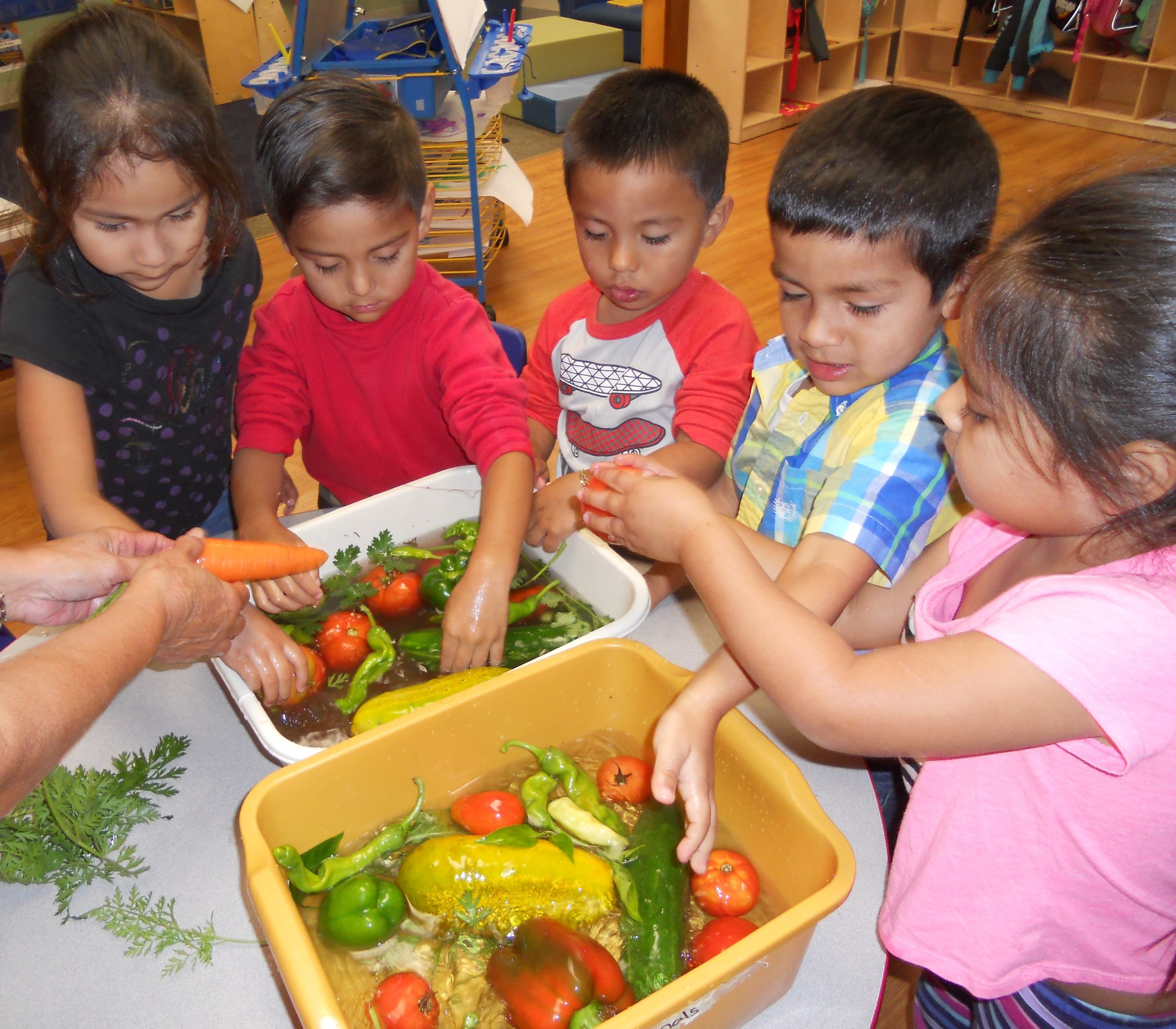 Be a Farm to School & Early Care Champion -