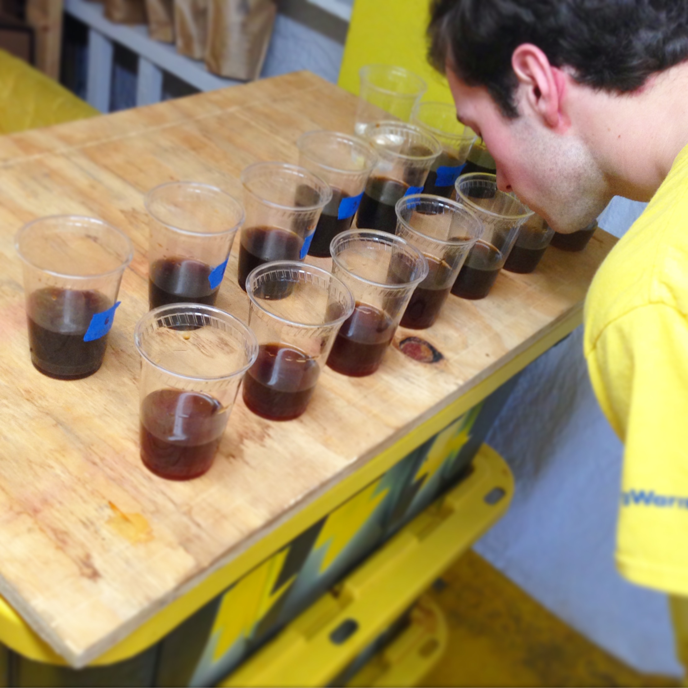 cold brew samples coffee cupping