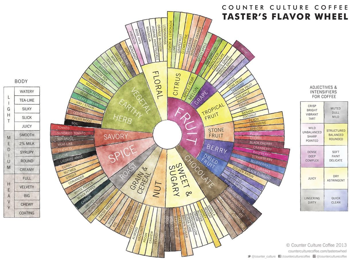 Counter Culture Flavor Tasting Wheel.jpg