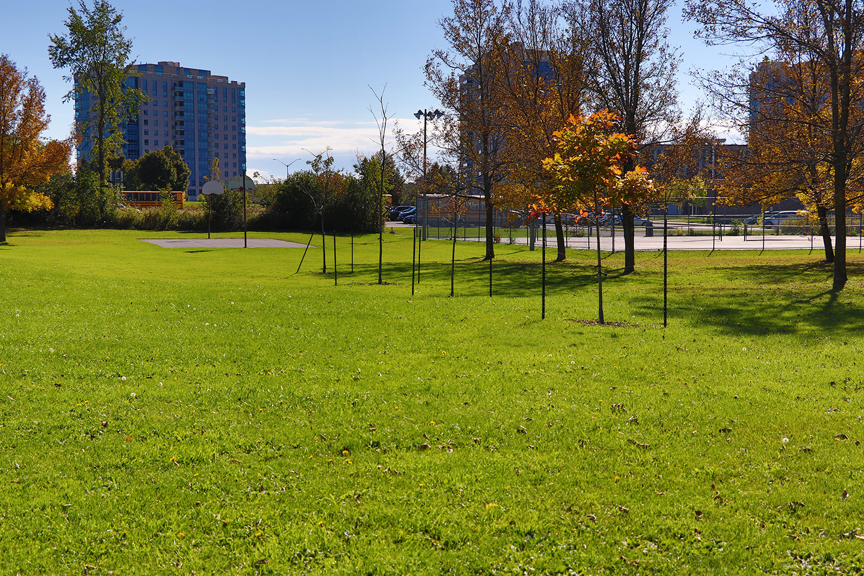 Greenwood_Park_Kingston_15.JPG