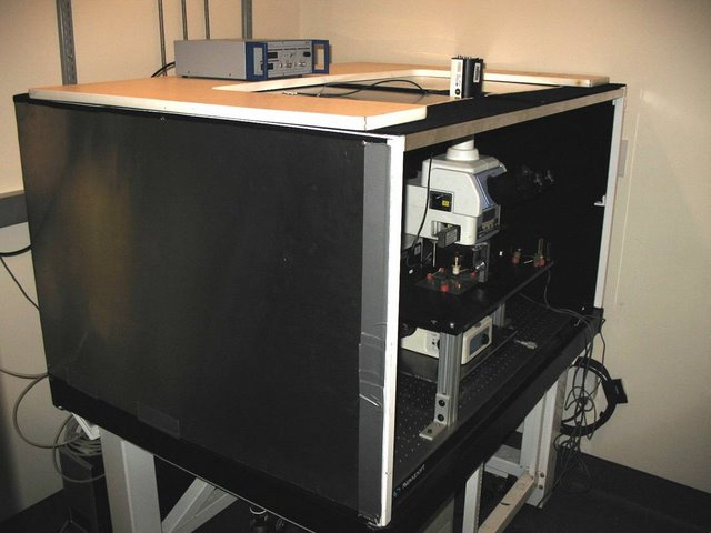 Lichtman Lab: Similar modifications were made to this Nikon microscope to allow for patch and extracellular recordings. Custom Faraday cage, fixed stage, and microscope translator are visible.