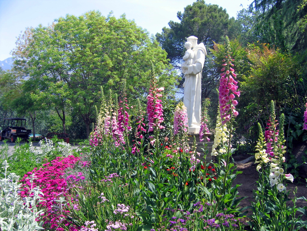 Garden of St. Francis of Assissi
