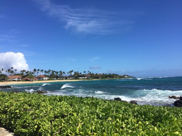 shipwreck-bay-kauai.jpg