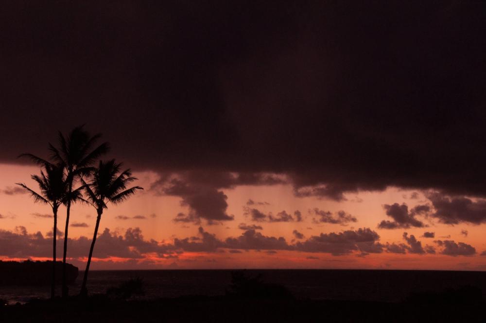 before-sunrise-Kauai_0732.jpg