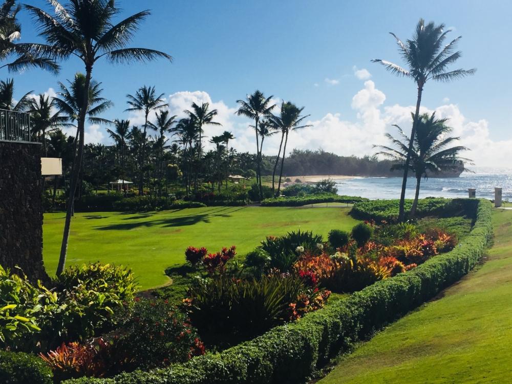 grand_hyatt_kauai_lawns_1748 (Edited).jpg