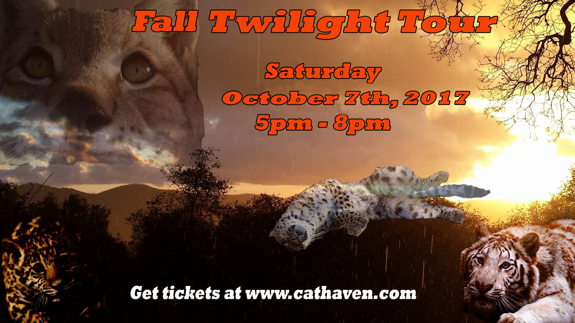 twilight tour fall.jpg