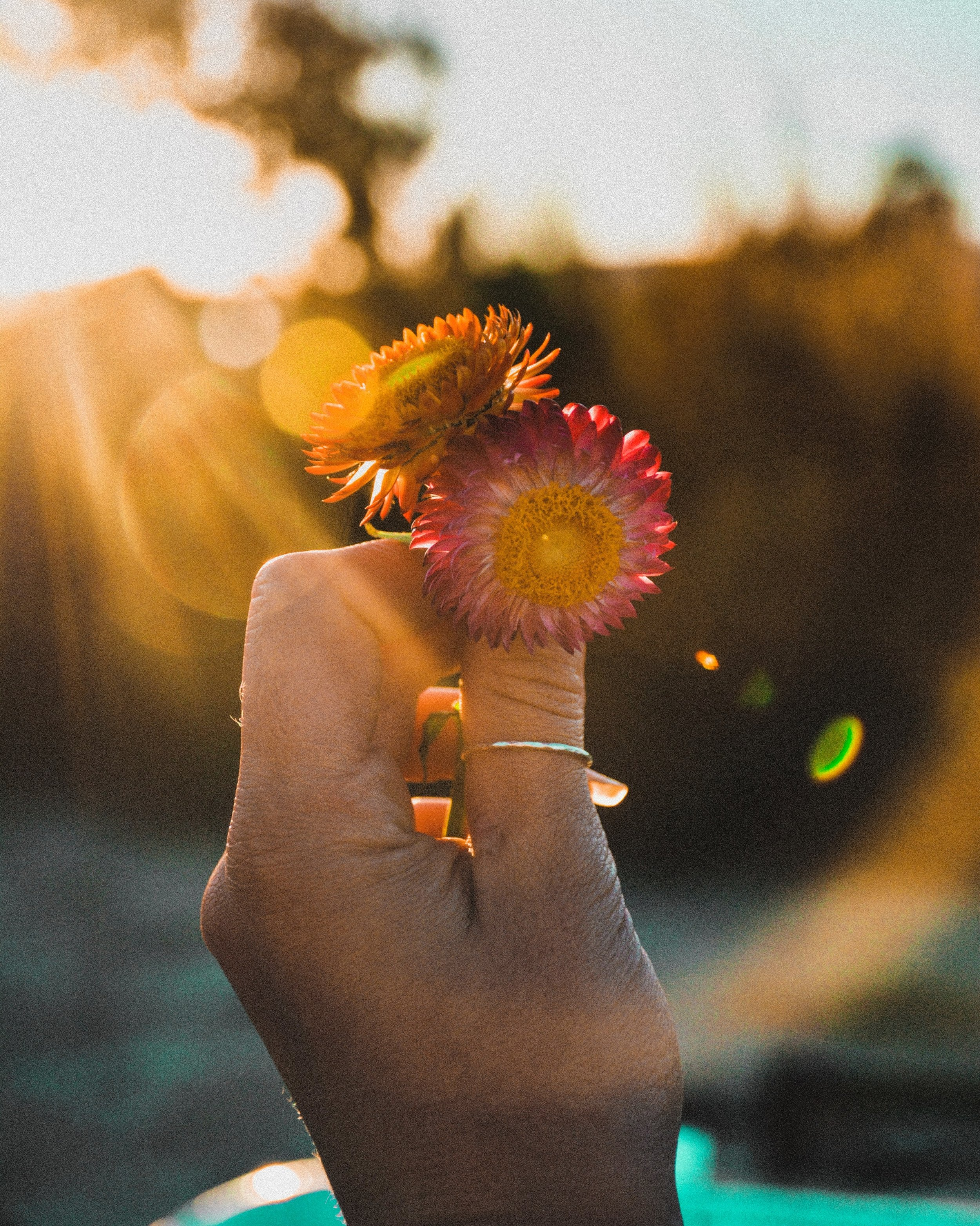 How_to_celebrate_summer_solstice.jpg