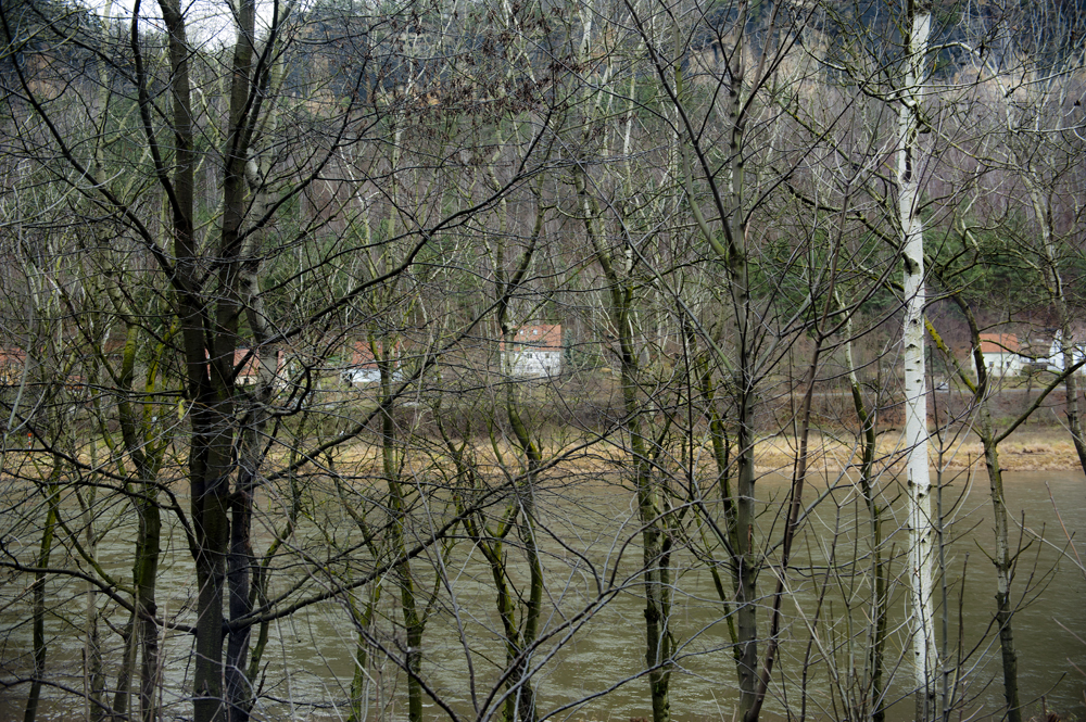 View from the train__024.jpg