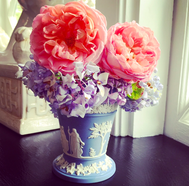 Bringing my roses and hydrangeas inside for some happiness