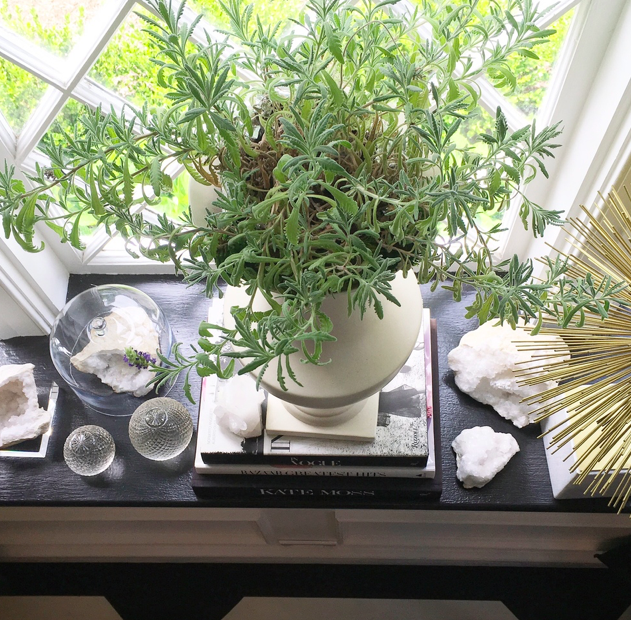 My crystal garden with some lavender... who doesn't love the scent of fresh lavender?