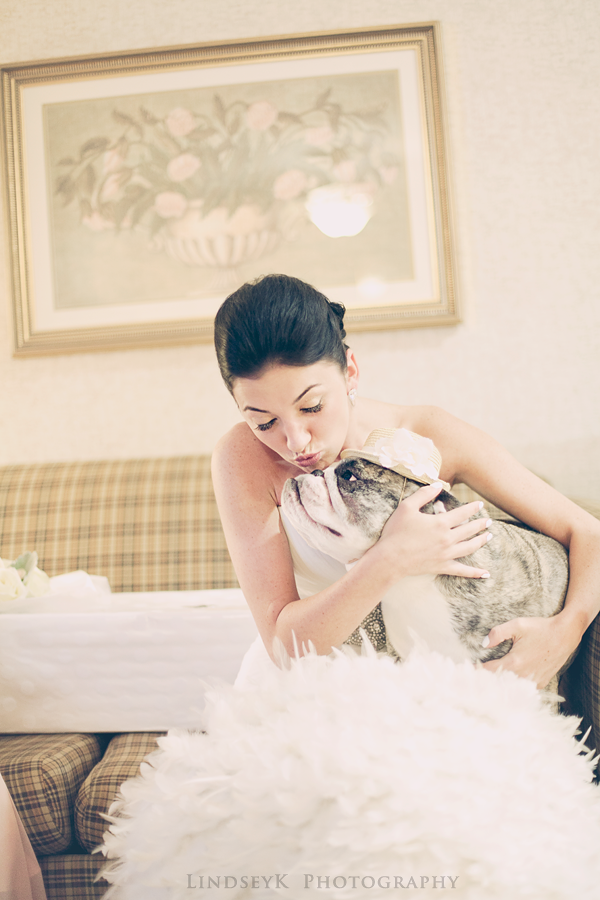 bride-and-dog.png