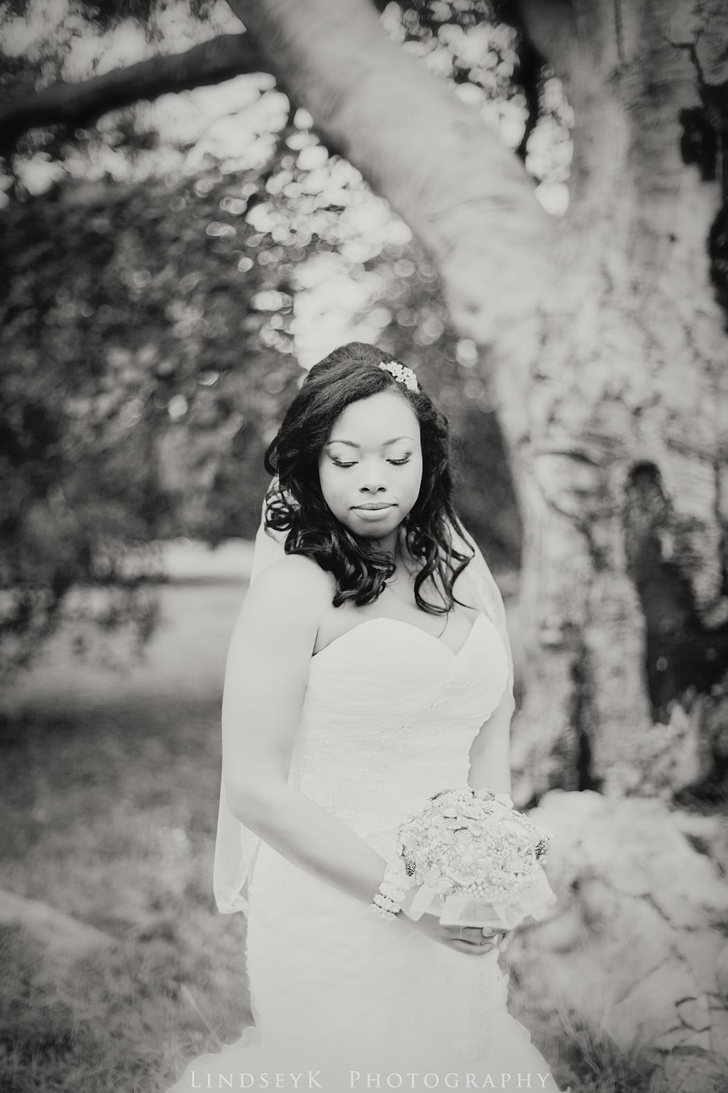 black-and-white-classic-bridal-portraits