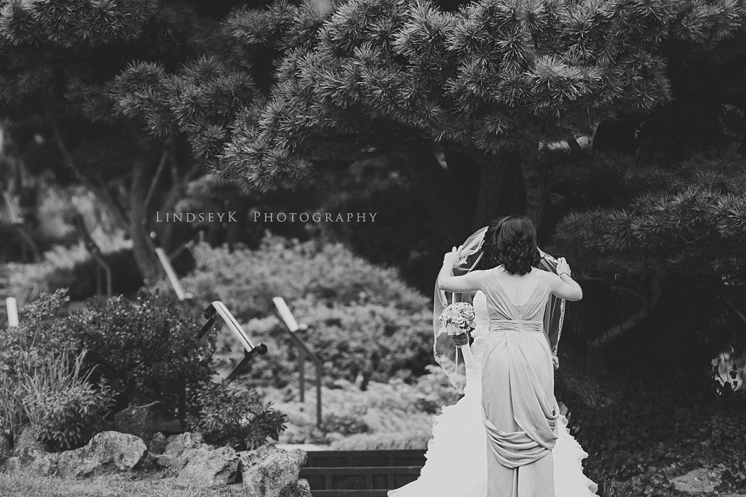 charlotte-documentary-wedding