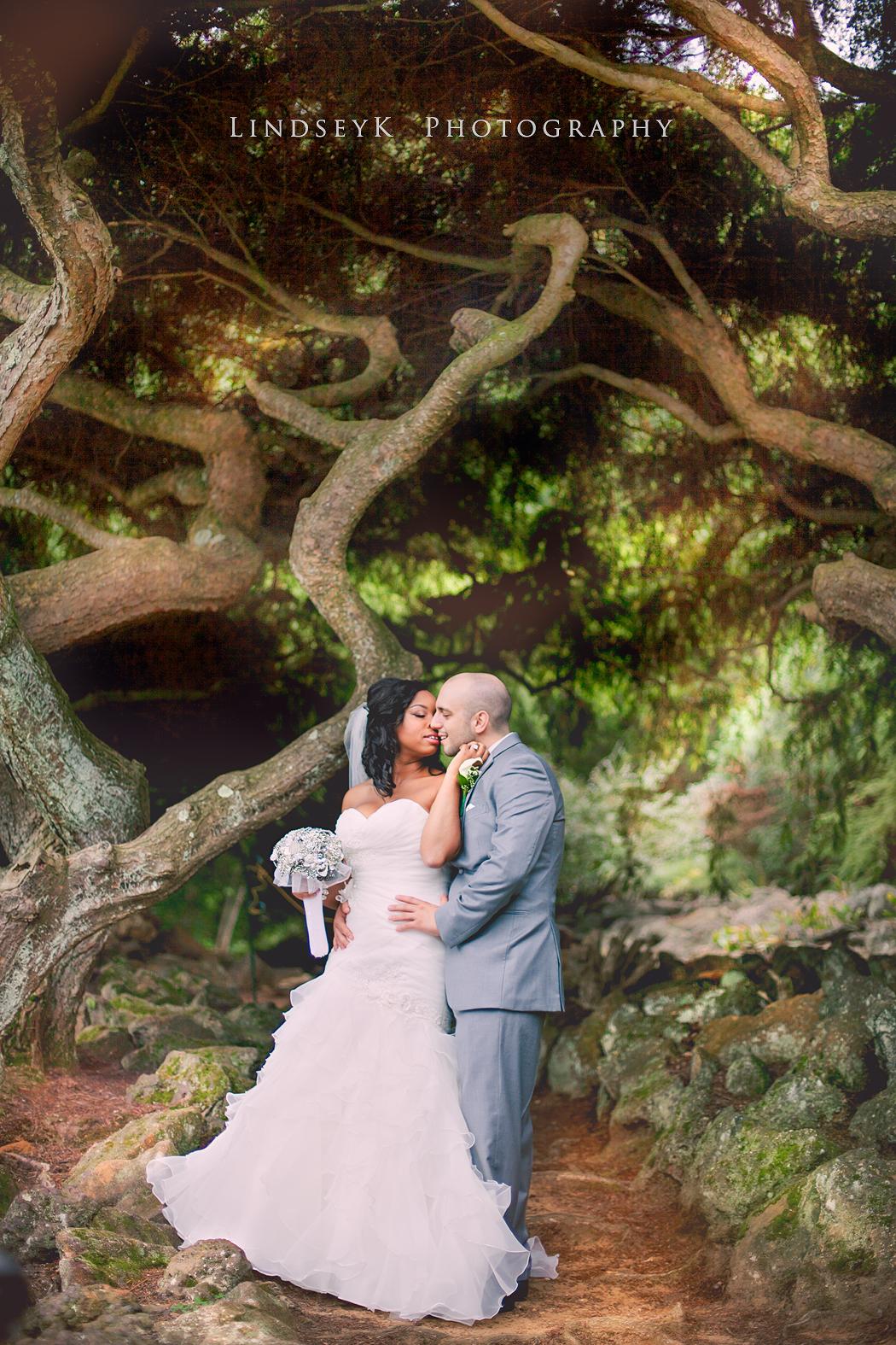 woodland-wedding-in-north-carolina