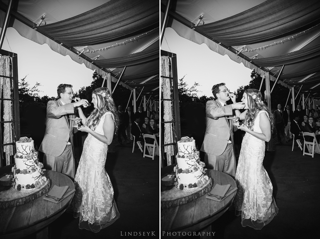 wedding-cake-smashing.jpg