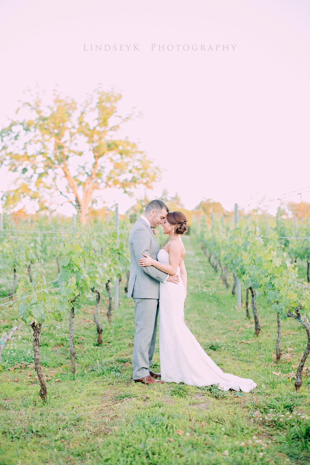 virginia-vineyard-wedding