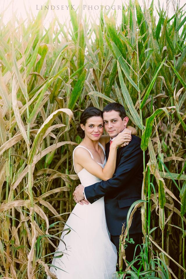 charlotte-corn-maze.jpg