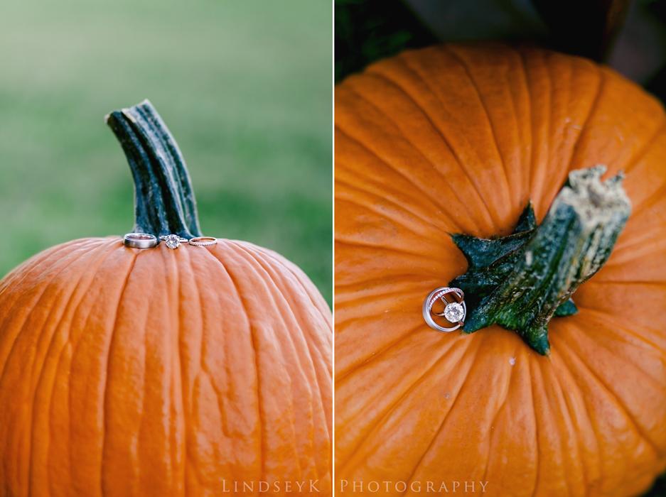 fall-ring-shot.jpg