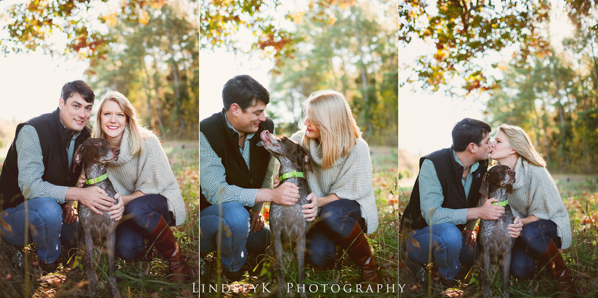 dog-engagement