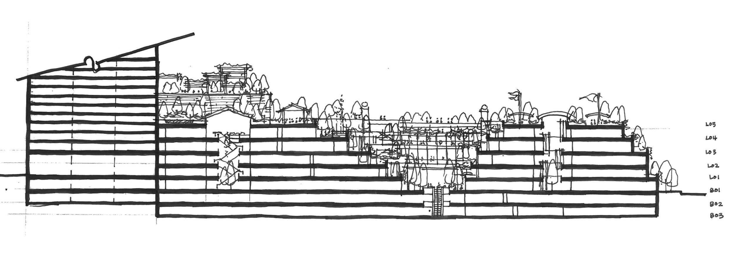 section2-b+w (2).jpg