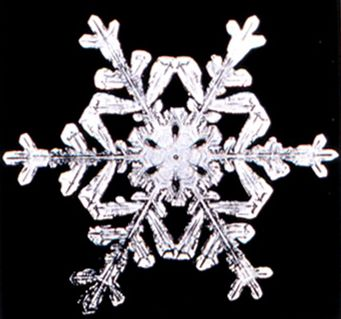 snow-crystal.jpg