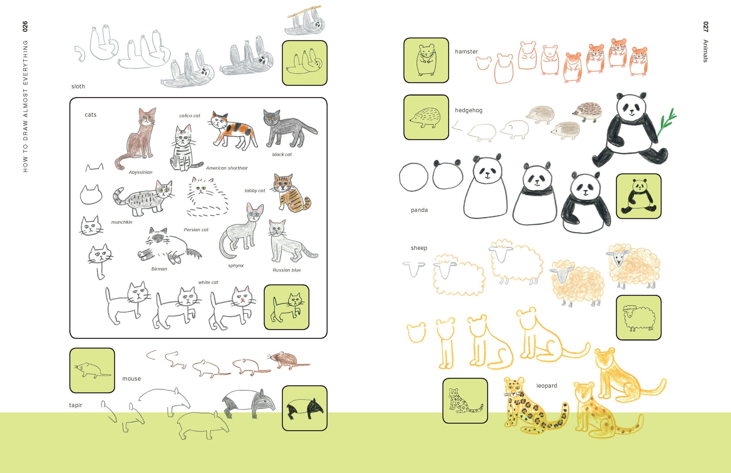 How to Draw Almost Everything 26.27.jpg