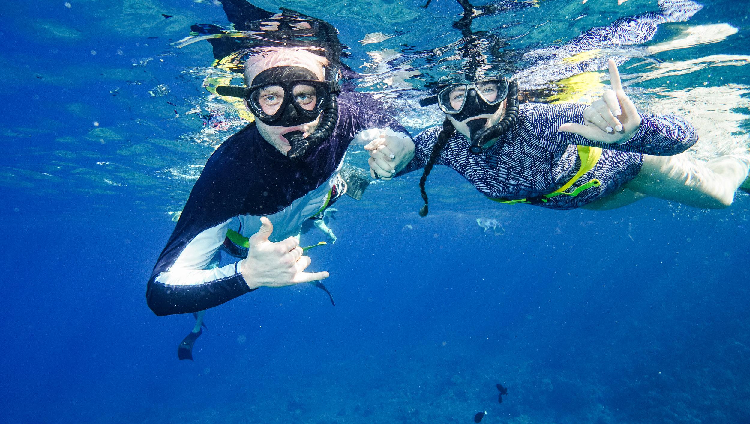 Snorkeling in Maui Hawaii - Morgan Tayler Photo & Design Vacation