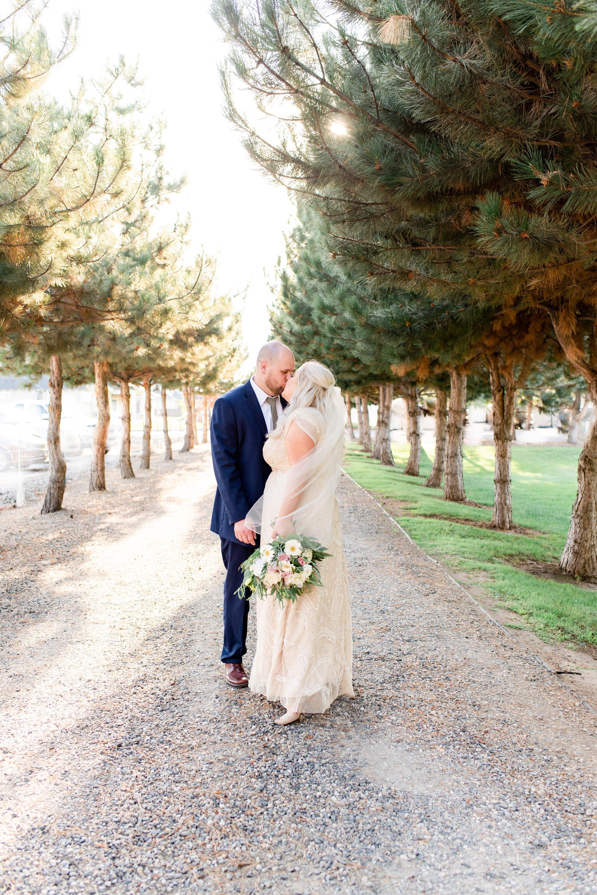Bride & Groom Portraits in Trees- Tri Cities Wedding Photographer - Morgan Tayler Photo & Design - Tri Cities Washington Backyard Wedding