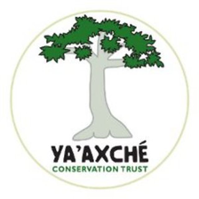 Ya'axche Conservation Trust
