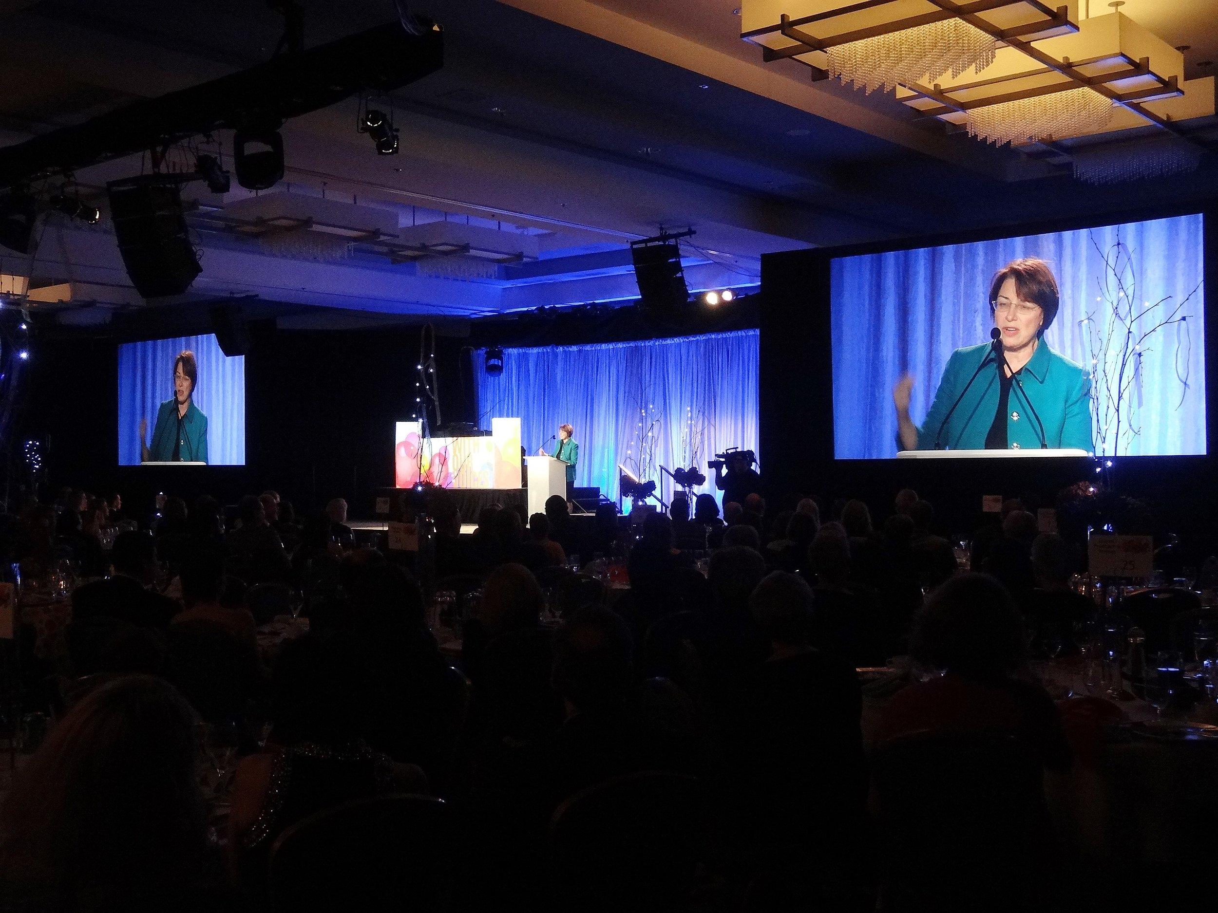 ARC Twin Cities 10th Anniversary Gala