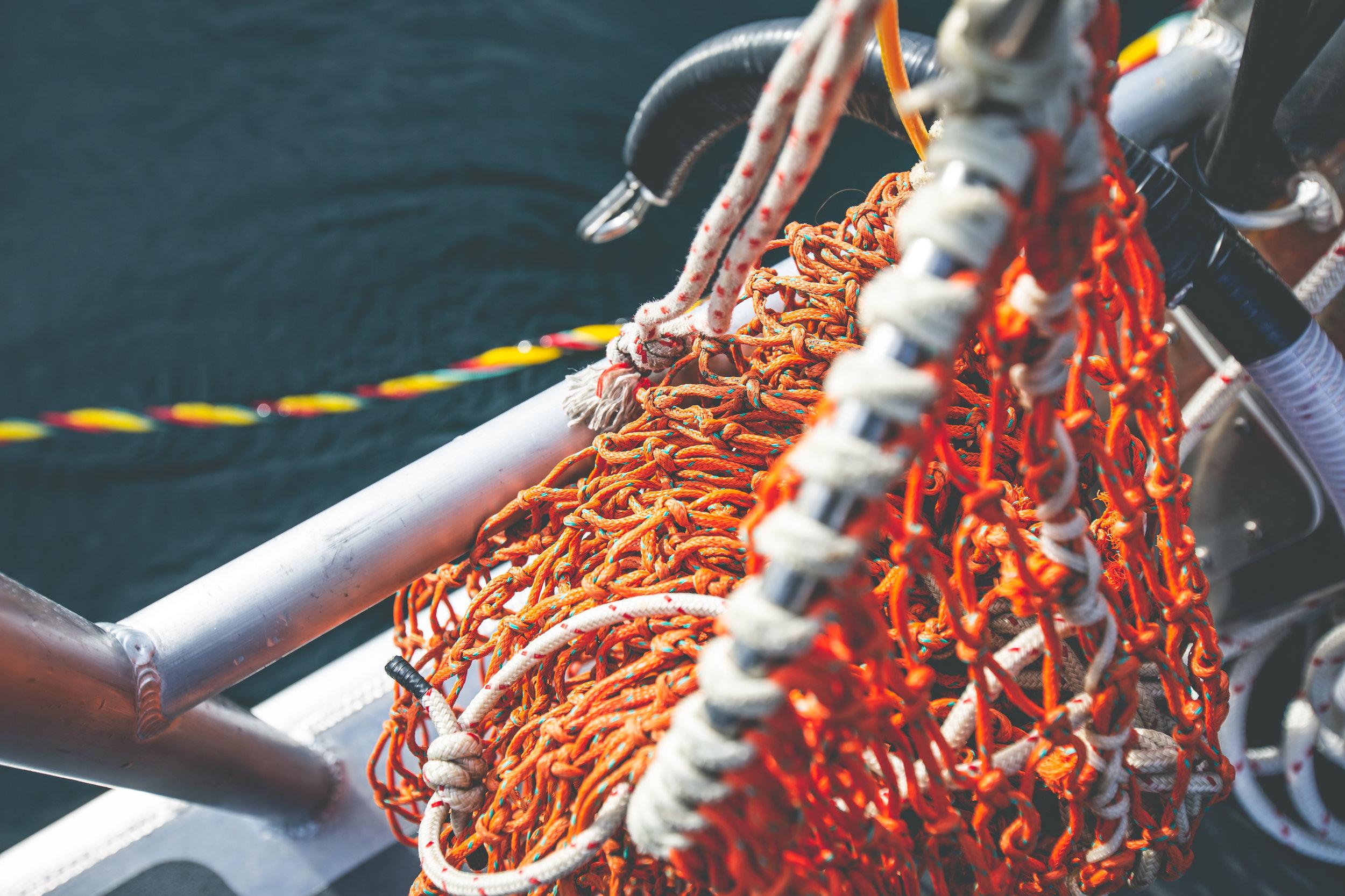2019_09_19 suquamish seafoods 00381.jpg