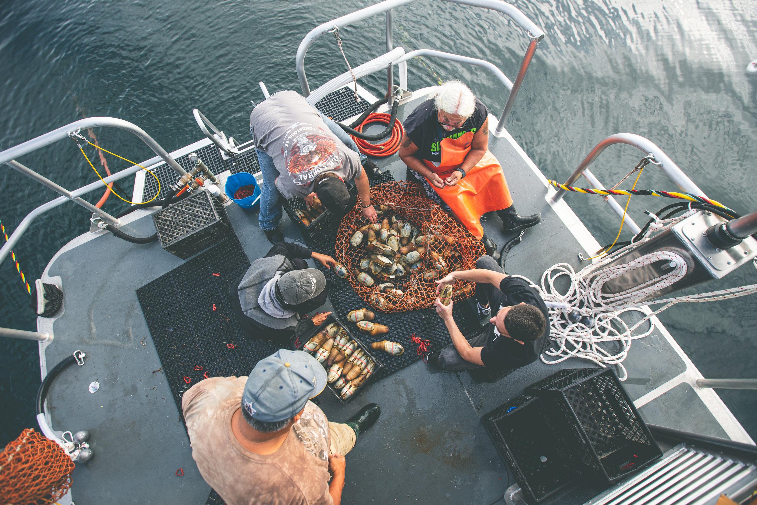 2019_09_19 suquamish seafoods 00459.jpg