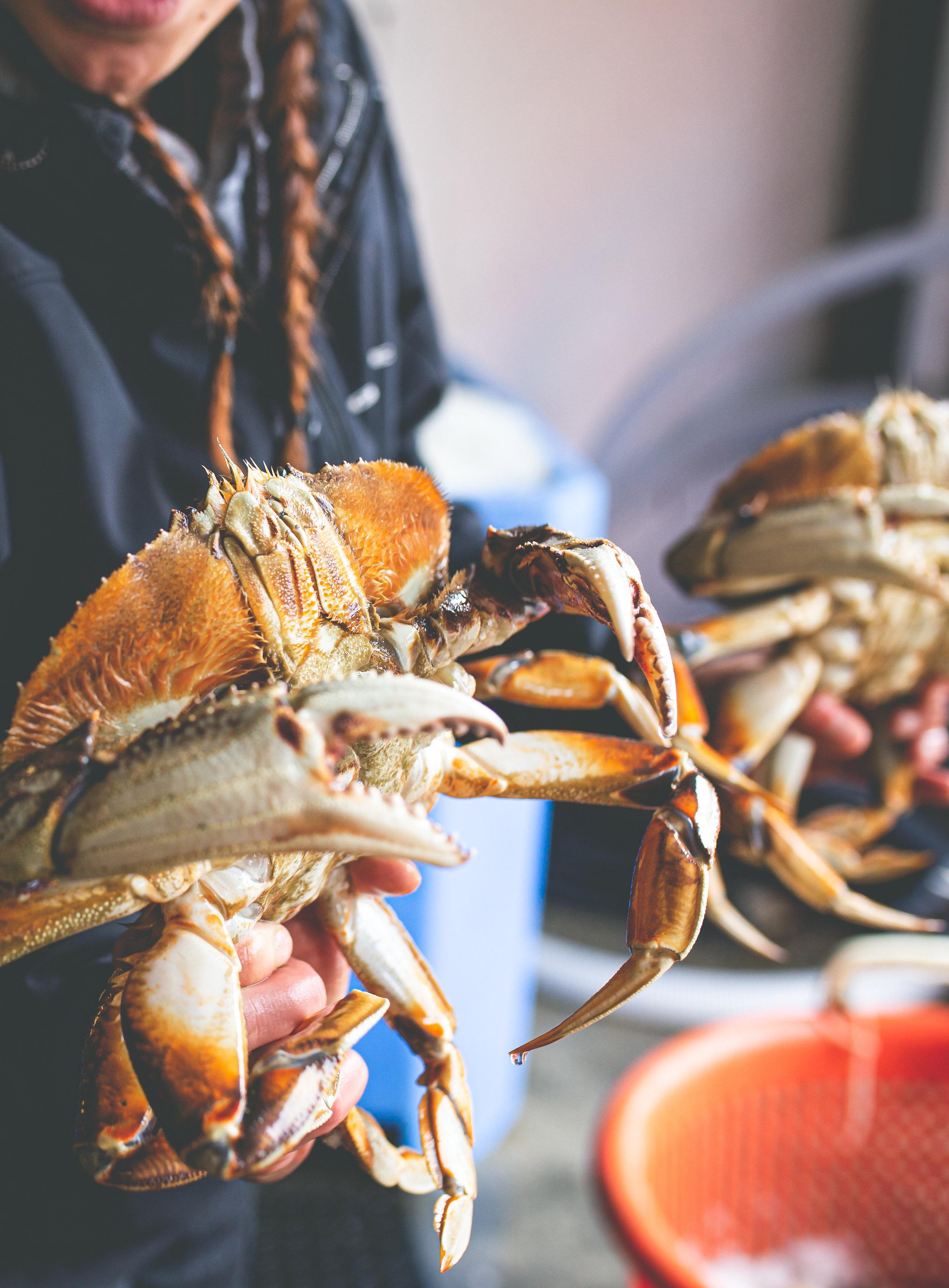 2019_09_20 suquamish seafoods 00052.jpg