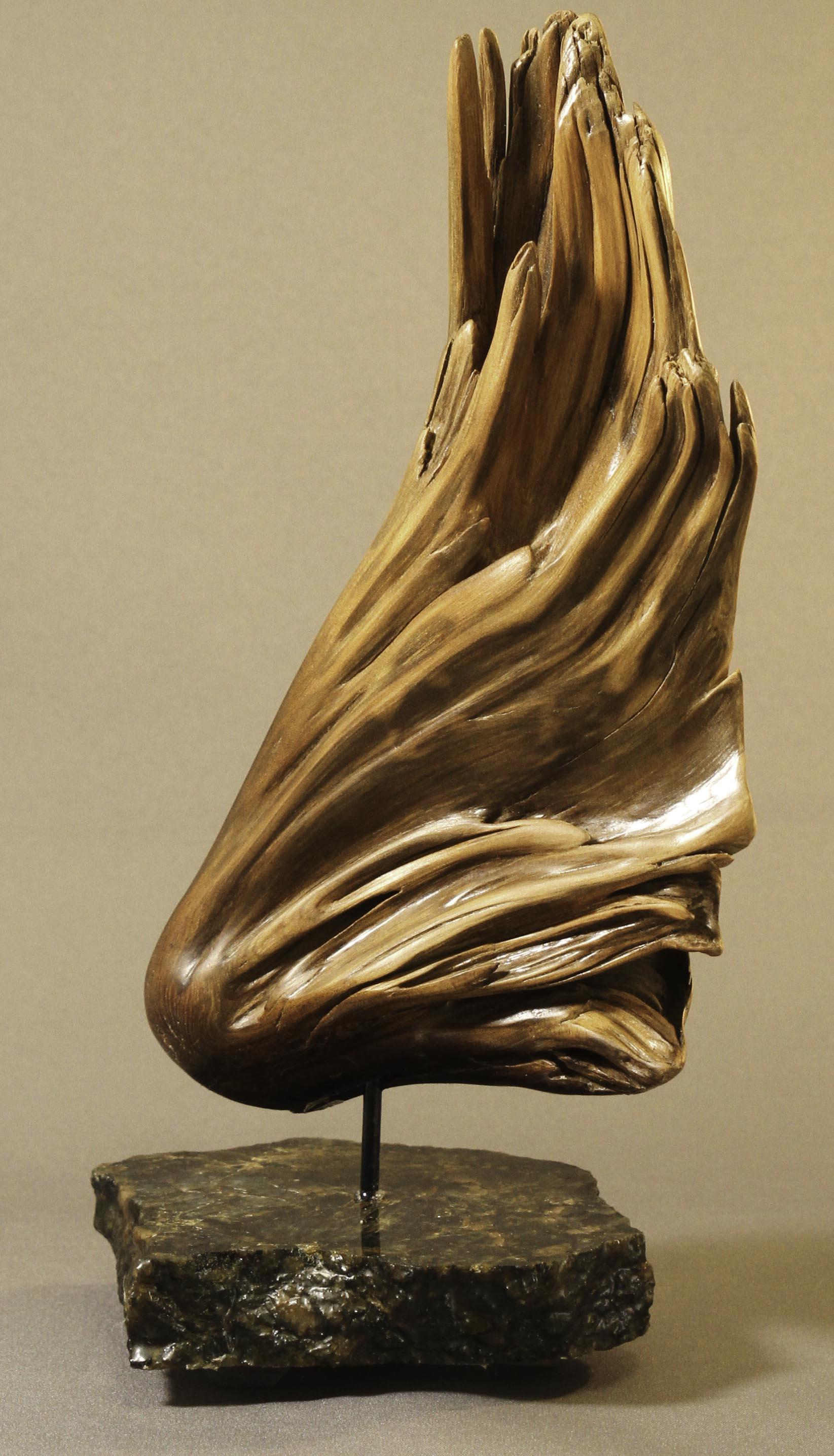 Little Brown Bird by Joan Masterson