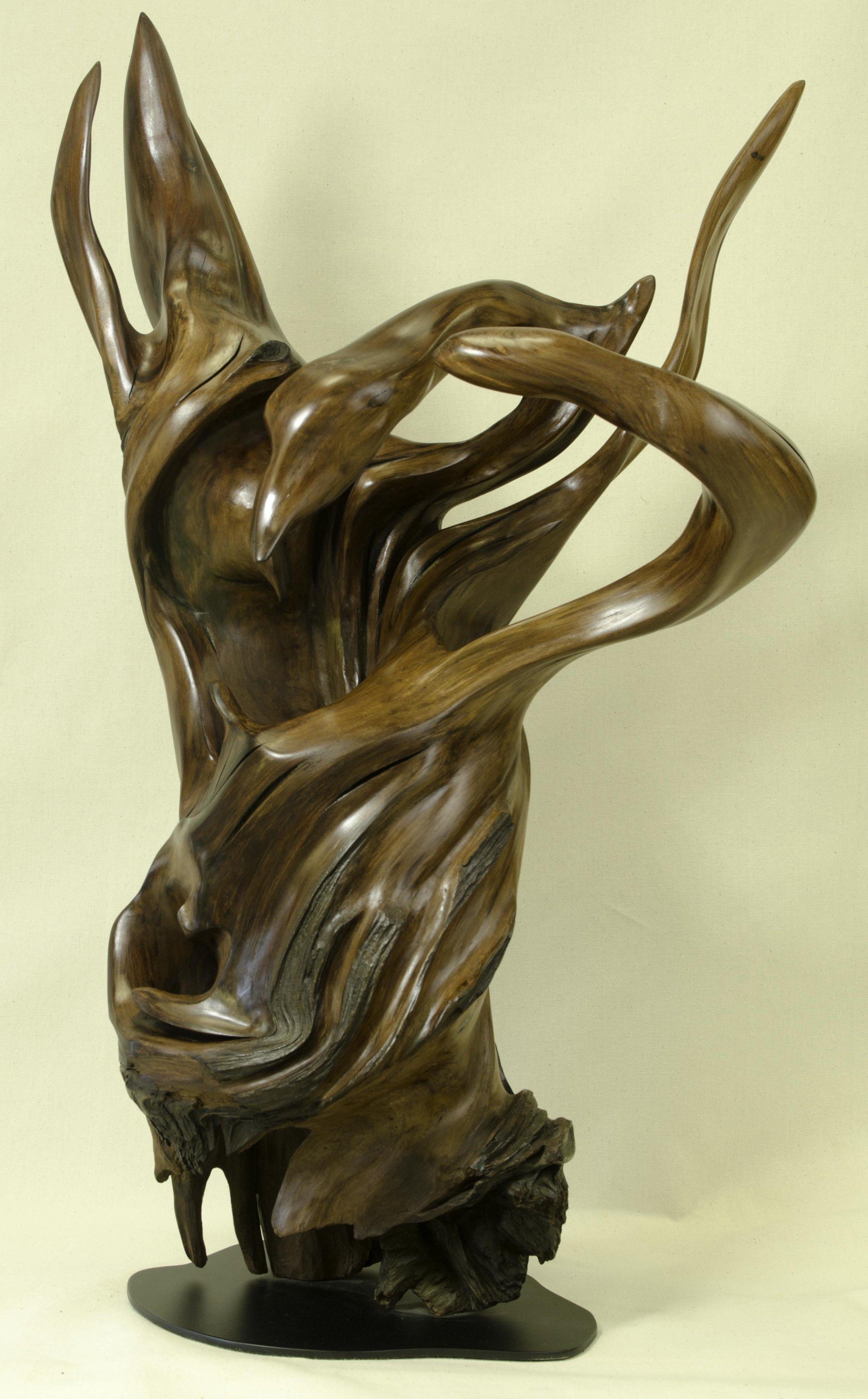 Emerging Swan by Tuttie Peetz