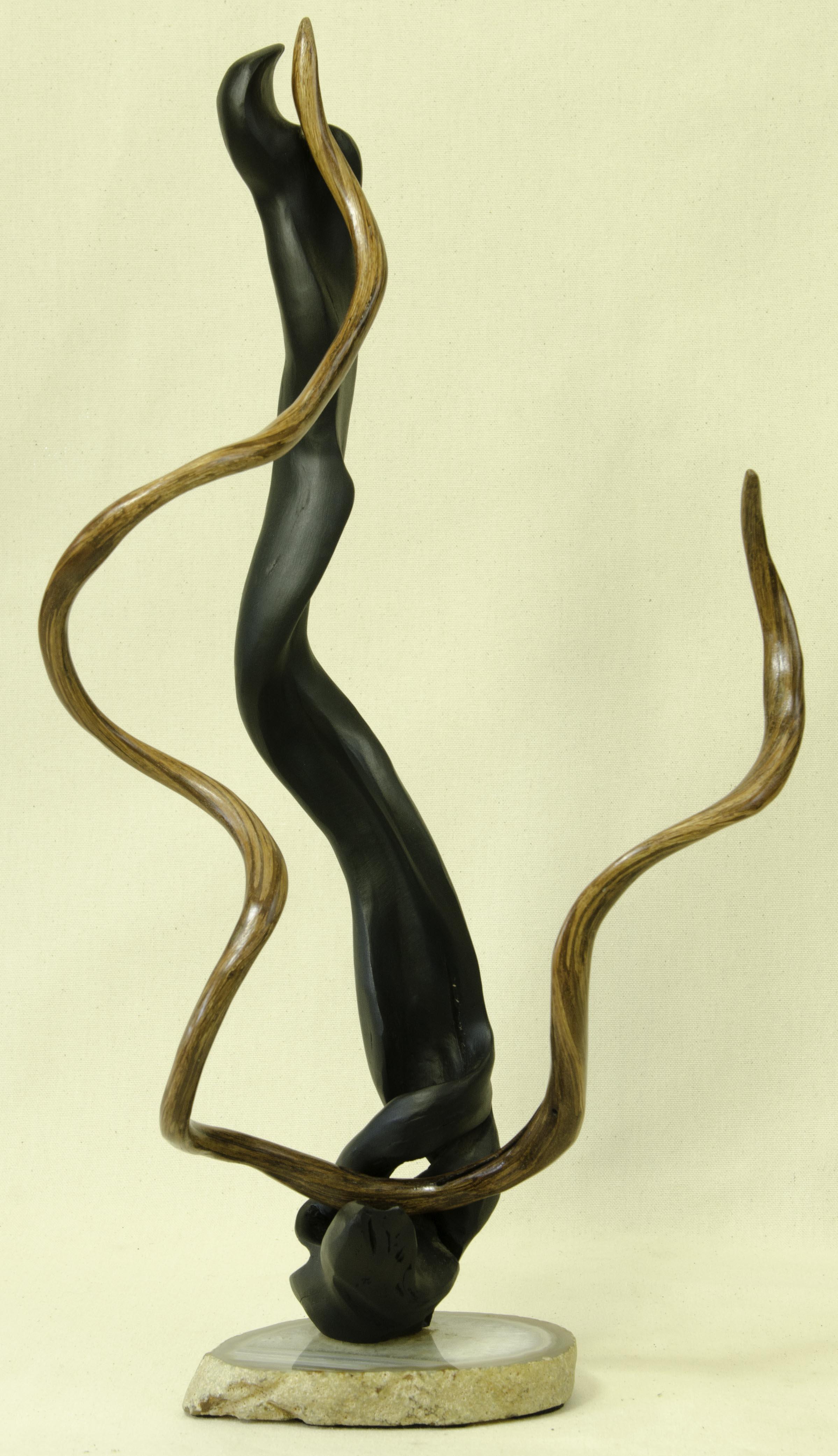 Forest Ballet by Tuttie Peetz