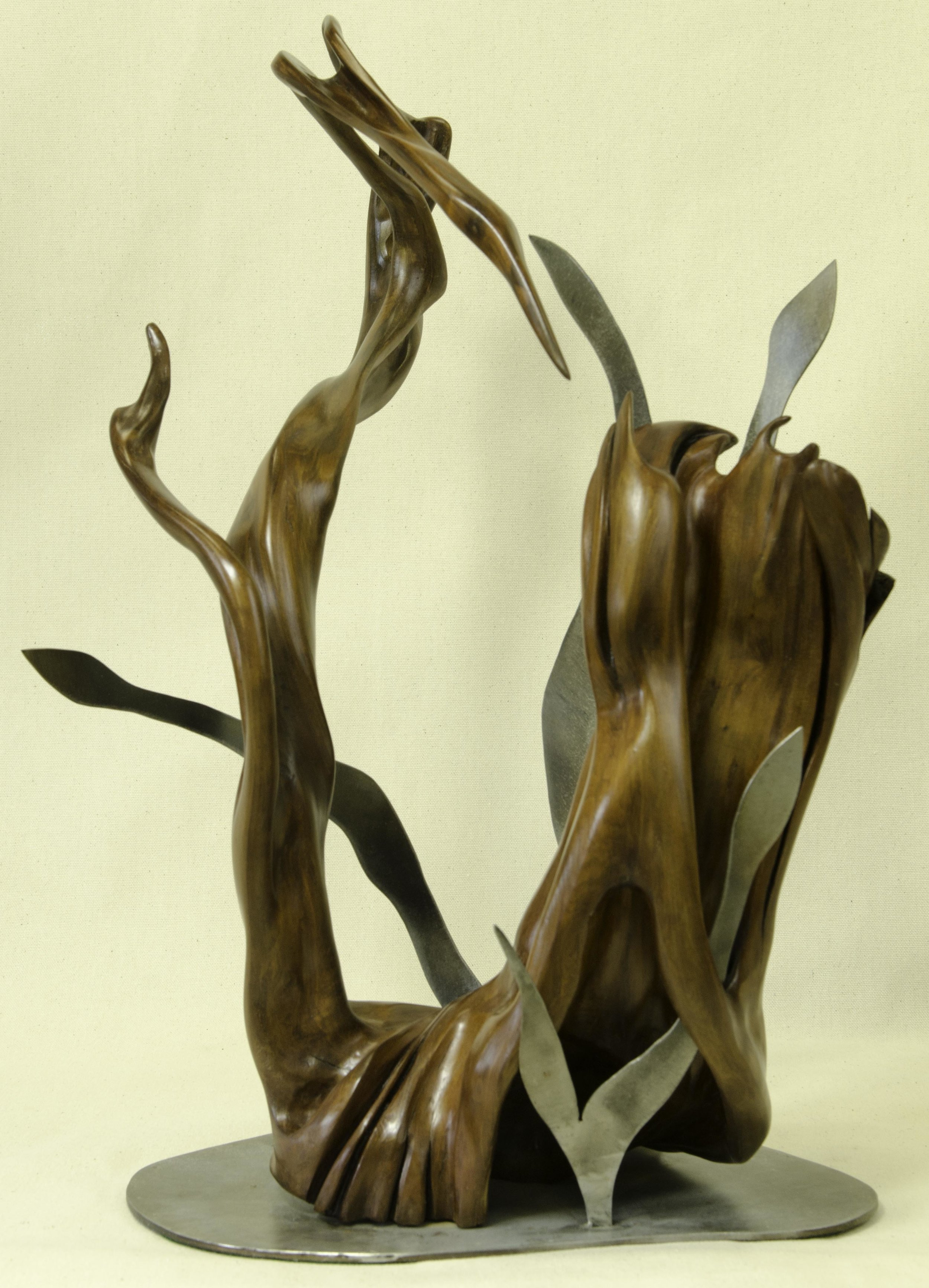Dance of the Herons by Tuttie Peetz